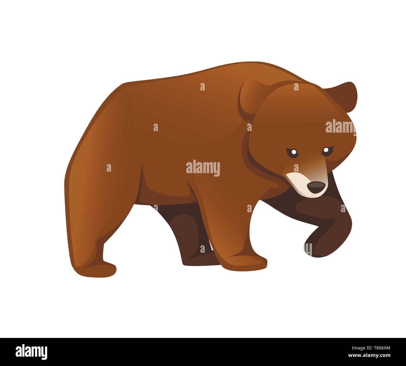 Grizzly Bear Animales En Norteamérica El Oso Pardo Diseño