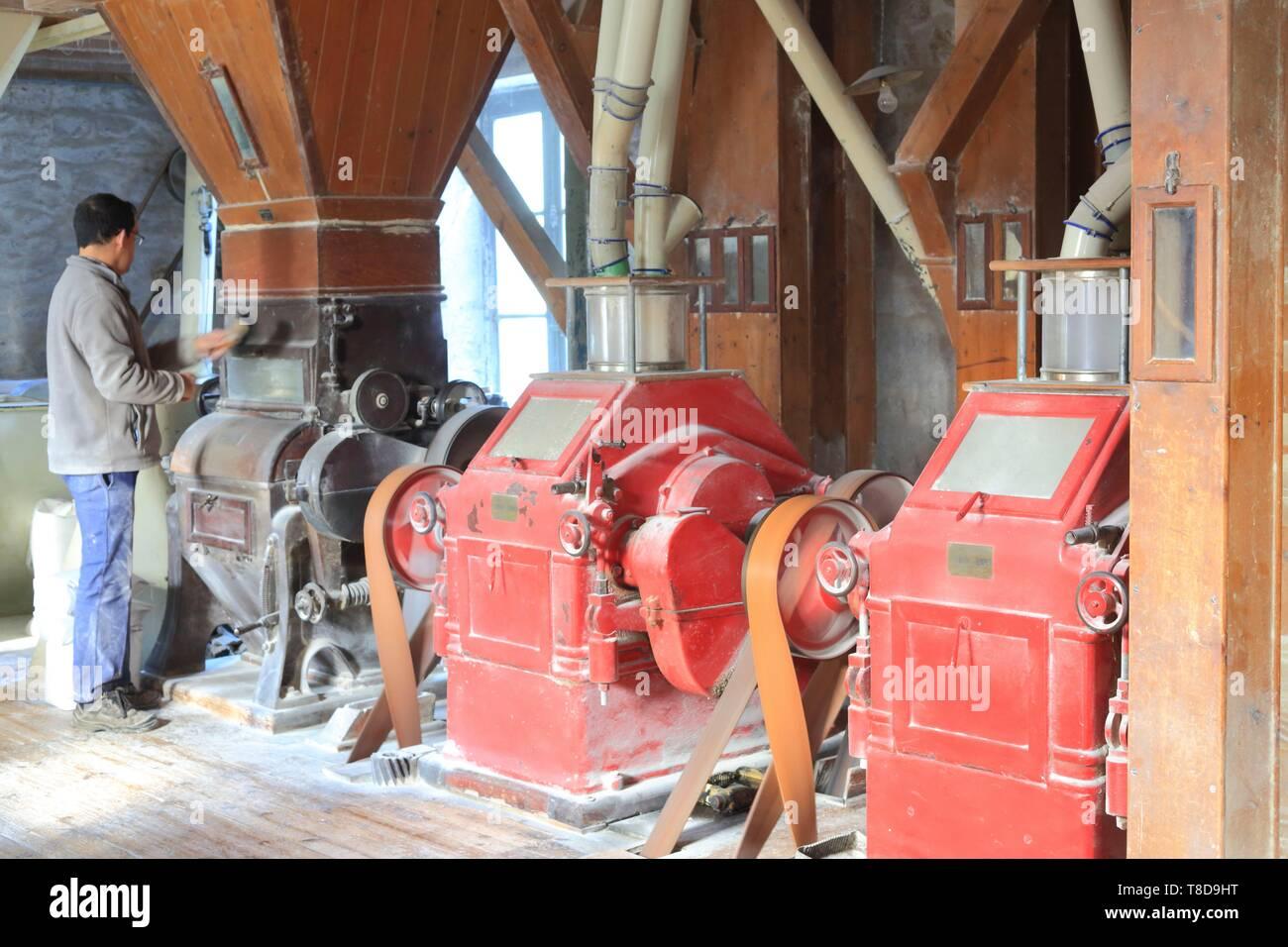 Francia, Ille et Vilaine, molino Quincampoix Rimou, regentado por la familia durante varias generaciones de Navidad (aquí Nicolas), fabricación de harinas (trigo orgánico y el alforfón) Imagen De Stock