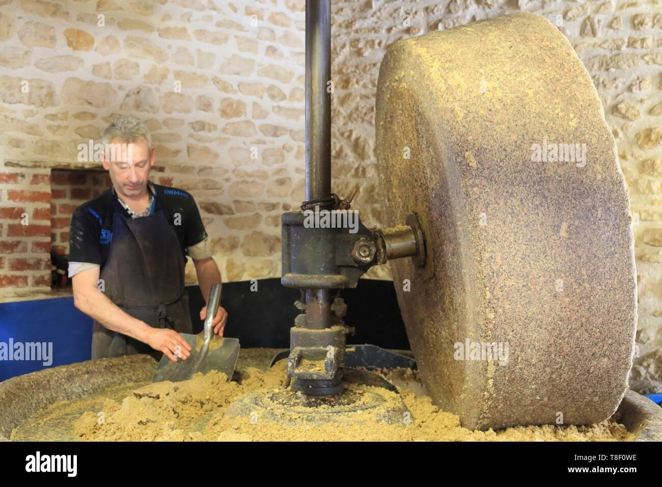 Francia, Saône et Loire, Iguerande, almazara J.Leblanc (1878), la fabricación de aceite de nuez con una rueda de piedra Imagen De Stock