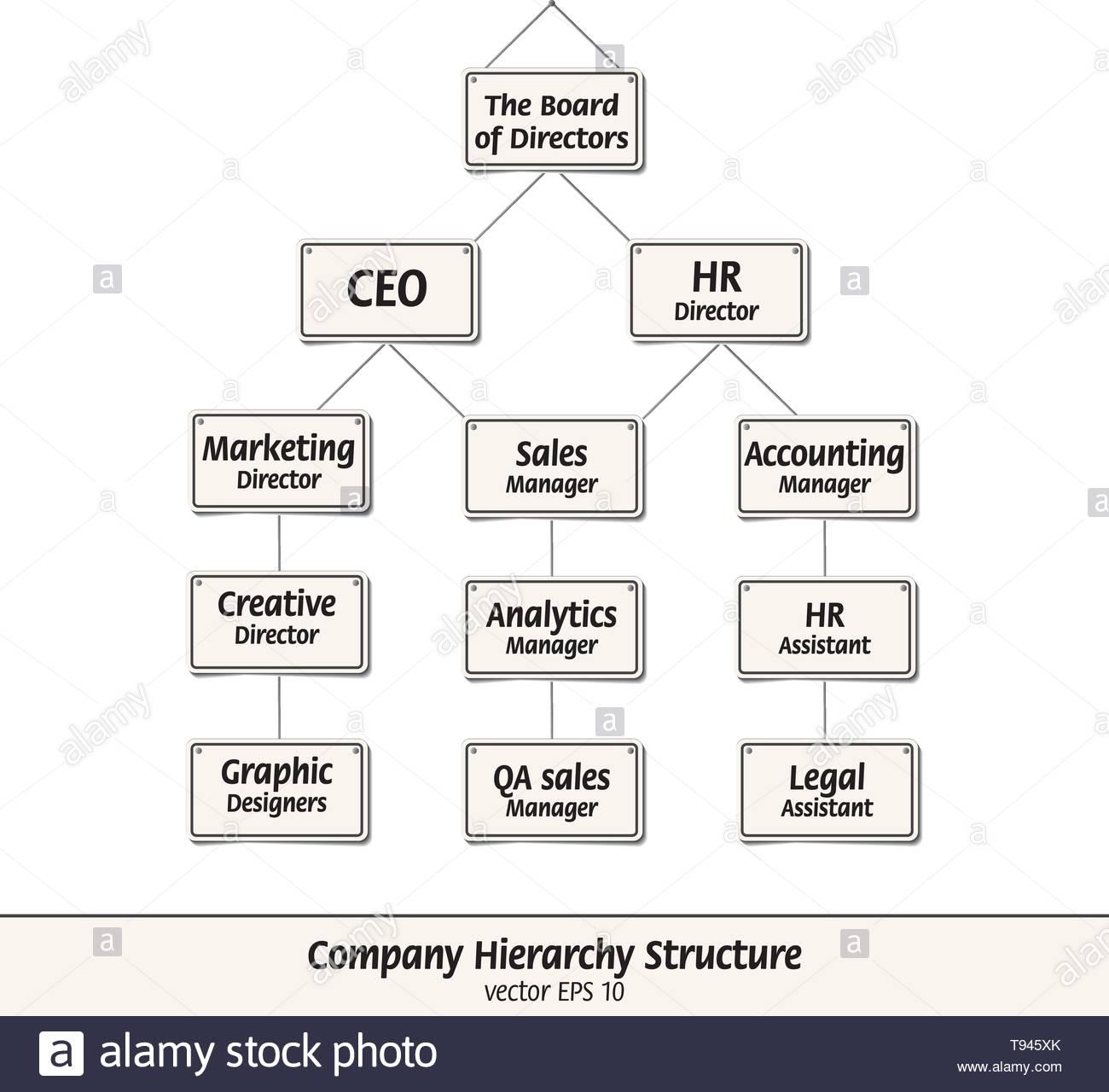 Estructura Jerárquica De La Empresa Vector Ilustrado Con