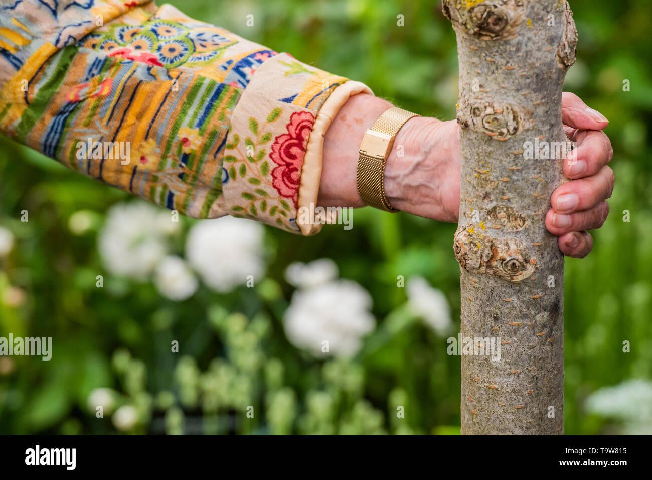 Londres, Reino Unido. 20 de mayo de 2019. Dame Judi Dench lanza una nueva iniciativa sobre la elming Hillier viveros stand - Pulse visprev día en el RHS Chelsea Flower Show. Crédito: Guy Bell/Alamy Live News Foto de stock