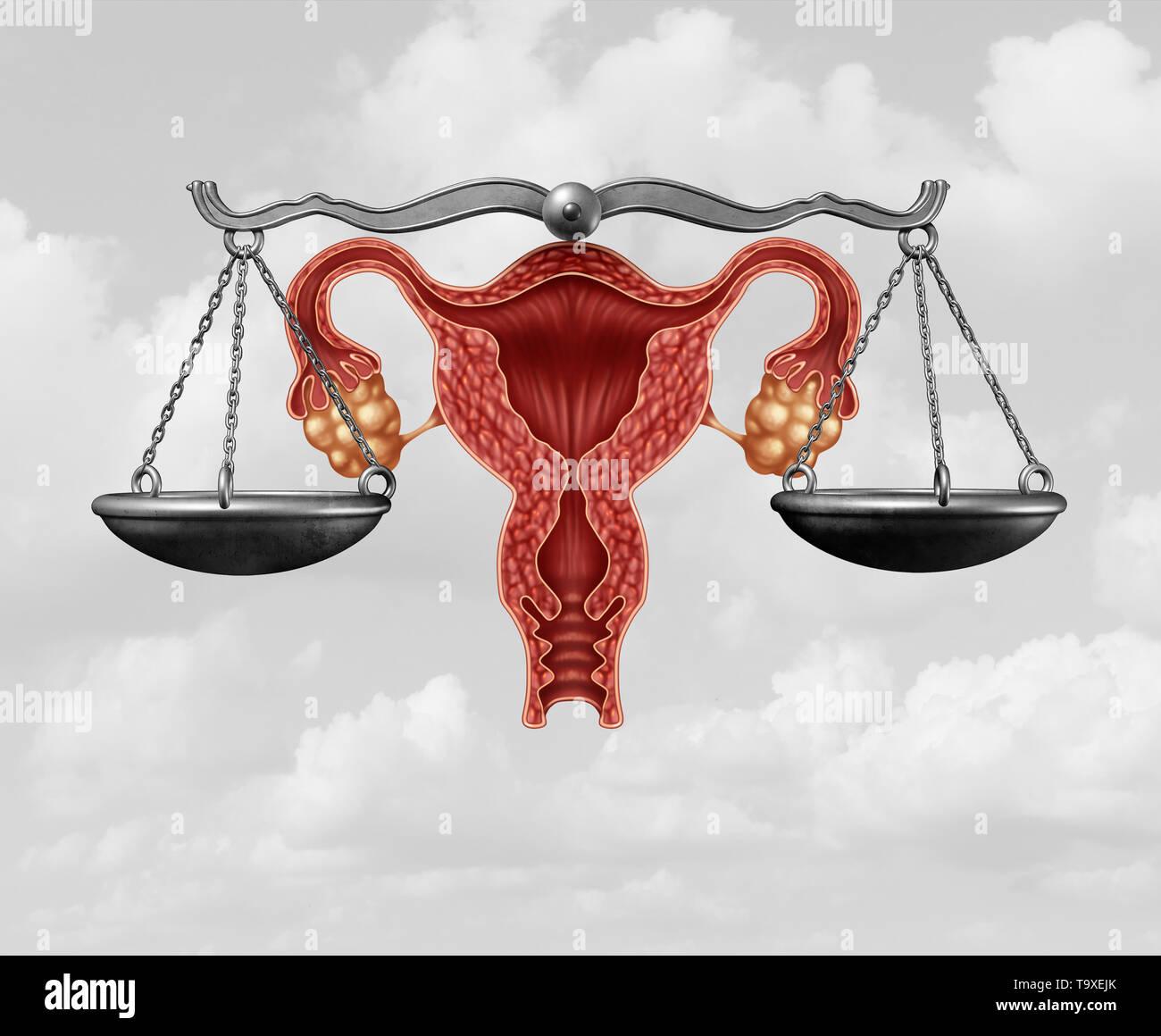 La legislación sobre el aborto y la justicia reproductiva como un concepto jurídico de la ley de derechos de reproducción por el gobierno para decidir las leyes relativas a la Pro Life. Foto de stock