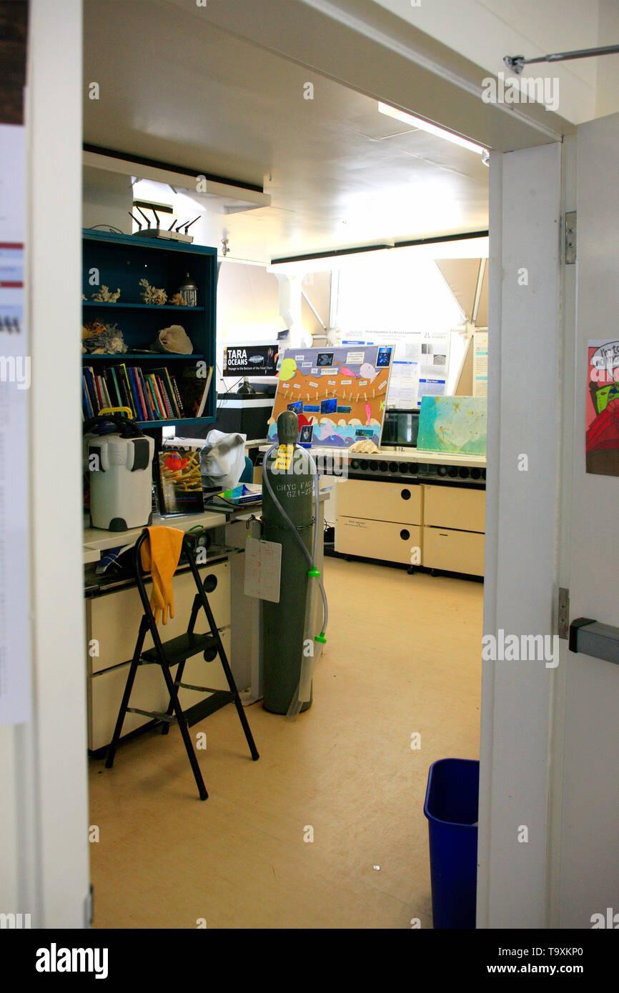 Trabajo en laboratorio Bisosphere 2, el American Earth System Science Research Facility localizada en Oracle, AZ Foto de stock