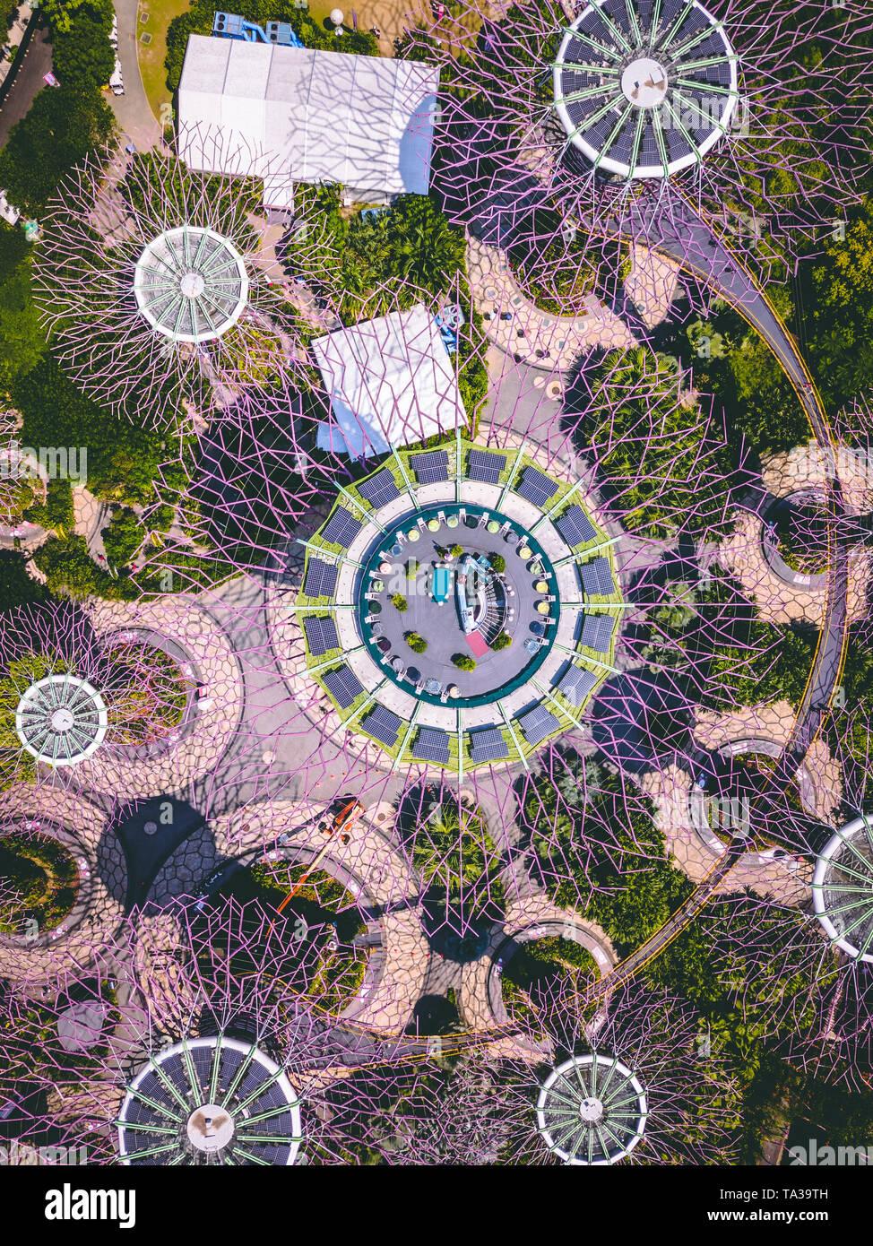 Toma aérea de la Supertree Grove en los jardines junto a la bahía, Singapur Foto de stock