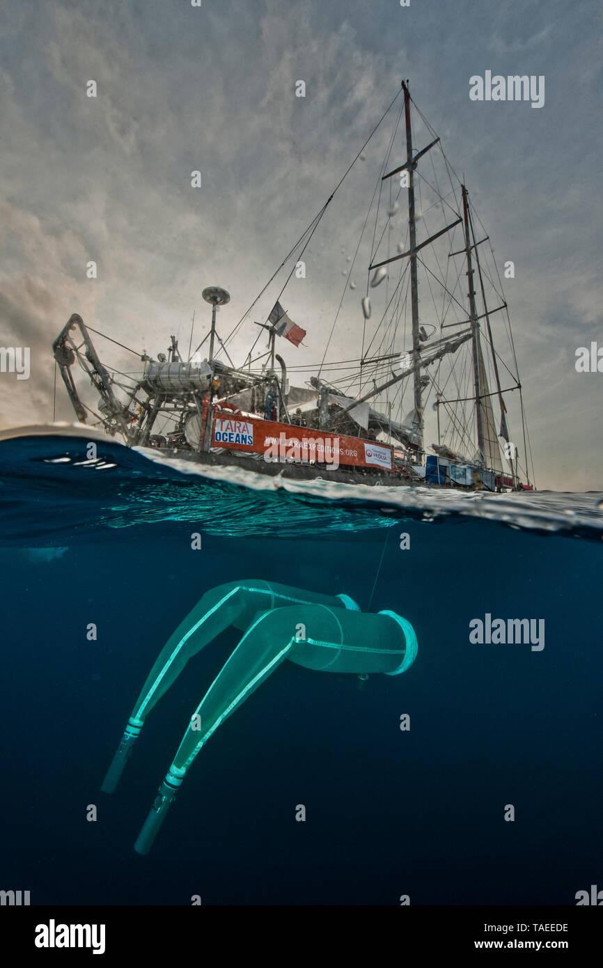 Tara Oceans Expeditions - Mayo de 2011. Tara con desplegado redes planctónicos. En 'station', el barco está a la deriva sin motor o velas. Tara Oceans, una única expedición: Tara Oceans es el primer intento de hacer un estudio global de plancton marino, una forma de vida marina que incluye organismos tan pequeños como virus y bacterias, y tan grande como medusas. Nuestro objetivo es entender mejor los ecosistemas planctónicos por explorar las innumerables especies, aprender acerca de las interacciones entre ellos y con sus environme Foto de stock