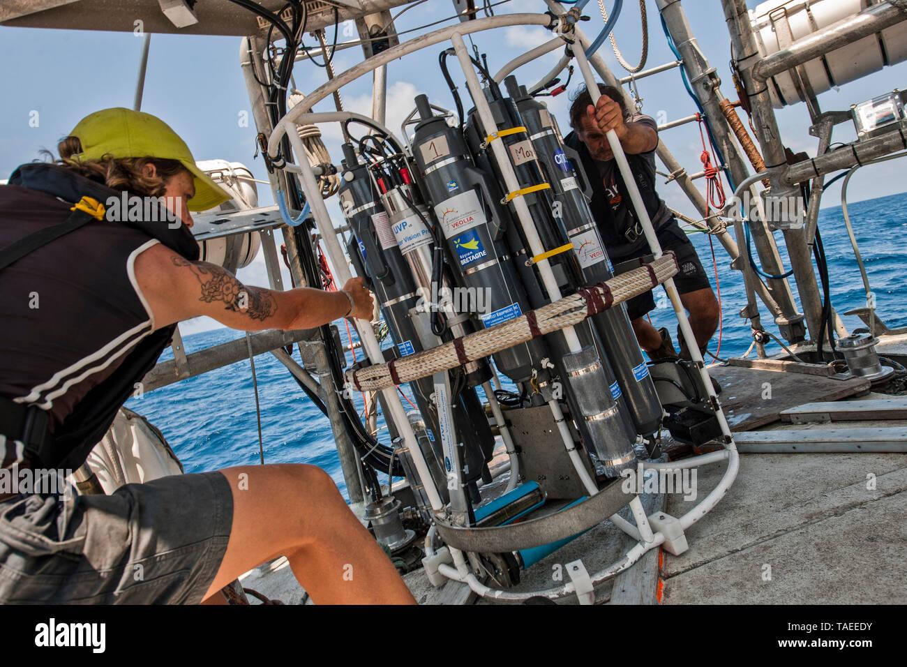 Tara Oceans Expeditions - Mayo de 2011. El ocean sunfish, Mola mola mola, o común, es la mayor conocida en el mundo de peces óseos. Tiene un peso promedio de los adultos de 1.000 kg (2.200 lb). La especie es nativa de las aguas tropicales y templadas de todo el mundo. Se asemeja a una cabeza de pescado con una cola, y su cuerpo principal está aplanado lateralmente. Sunfish pueden ser tan altos como son largos cuando sus aletas dorsal y ventral están extendidos. Sunfish viven en una dieta que consiste principalmente de medusas, sino porque este Foto de stock