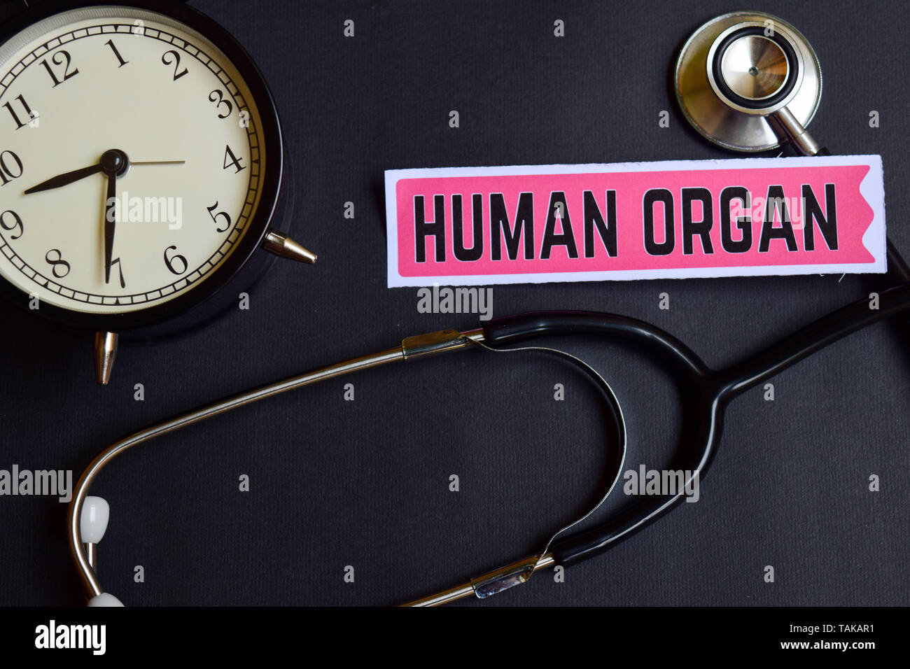 Órgano humano sobre el papel con concepto sanitario inspiración. reloj alarma, Negro estetoscopio. Foto de stock