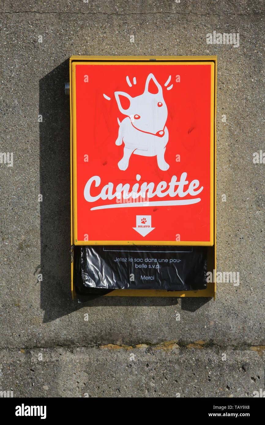 Caninette. Imagen De Stock