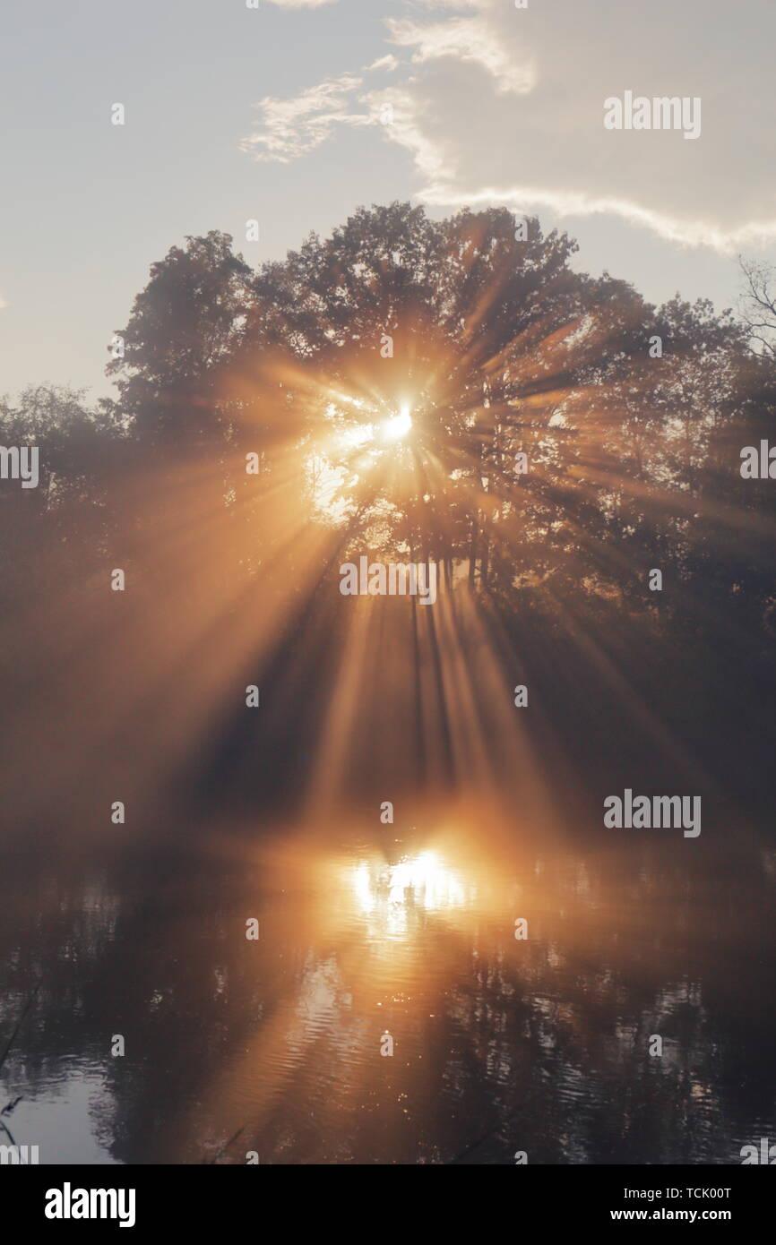 Los rayos de sol naranja que penetra a través de los árboles y lanzando una reflexión sobre el agua. Los colores de los árboles, el cielo y el agua son moderadas para poner énfasis a Foto de stock