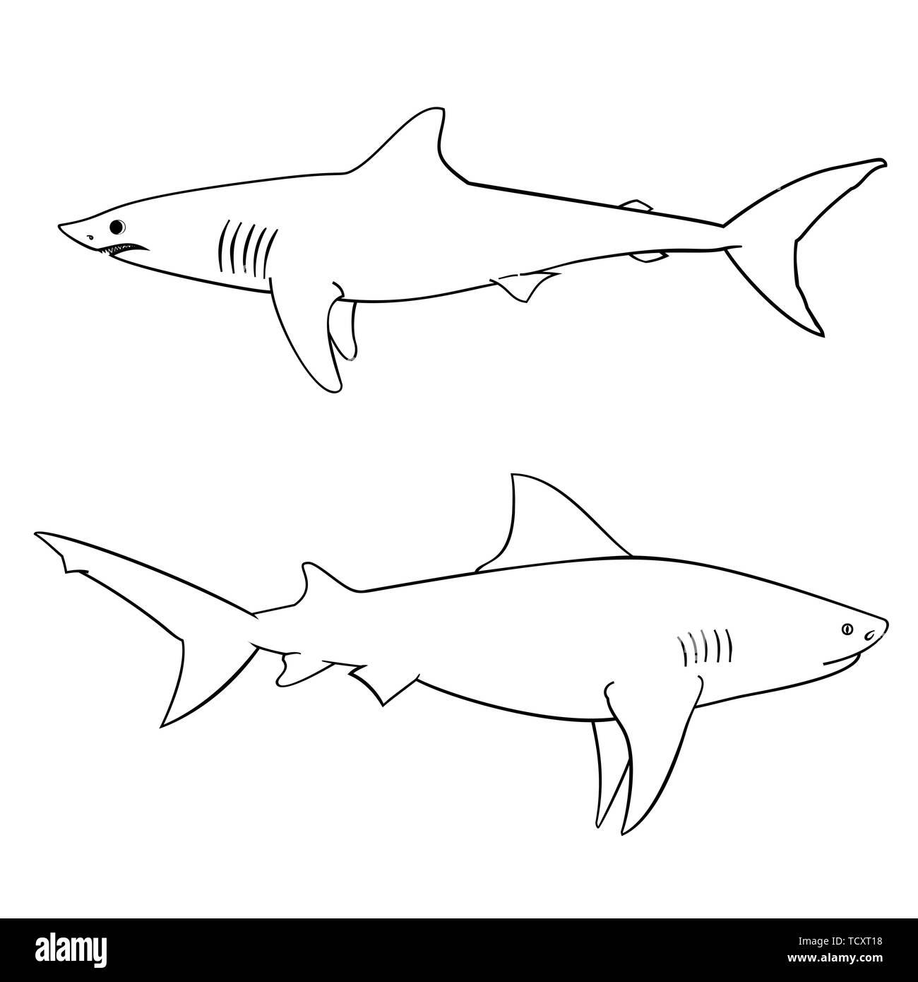 Libro Para Colorear Los Tiburones Ilustración Del Vector