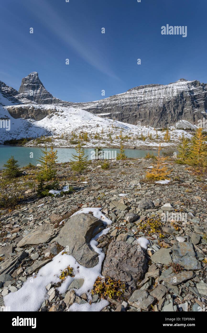 Pequeño lago en frente de un paisaje montañoso, East Kootenays, Montañas Rocosas, British Columbia, Canadá Foto de stock