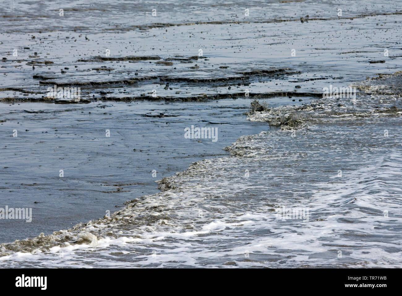 Mar de Wadden en Schiermonnikoog en marea baja, Holanda, Frisia, Schiermonnikoog Foto de stock