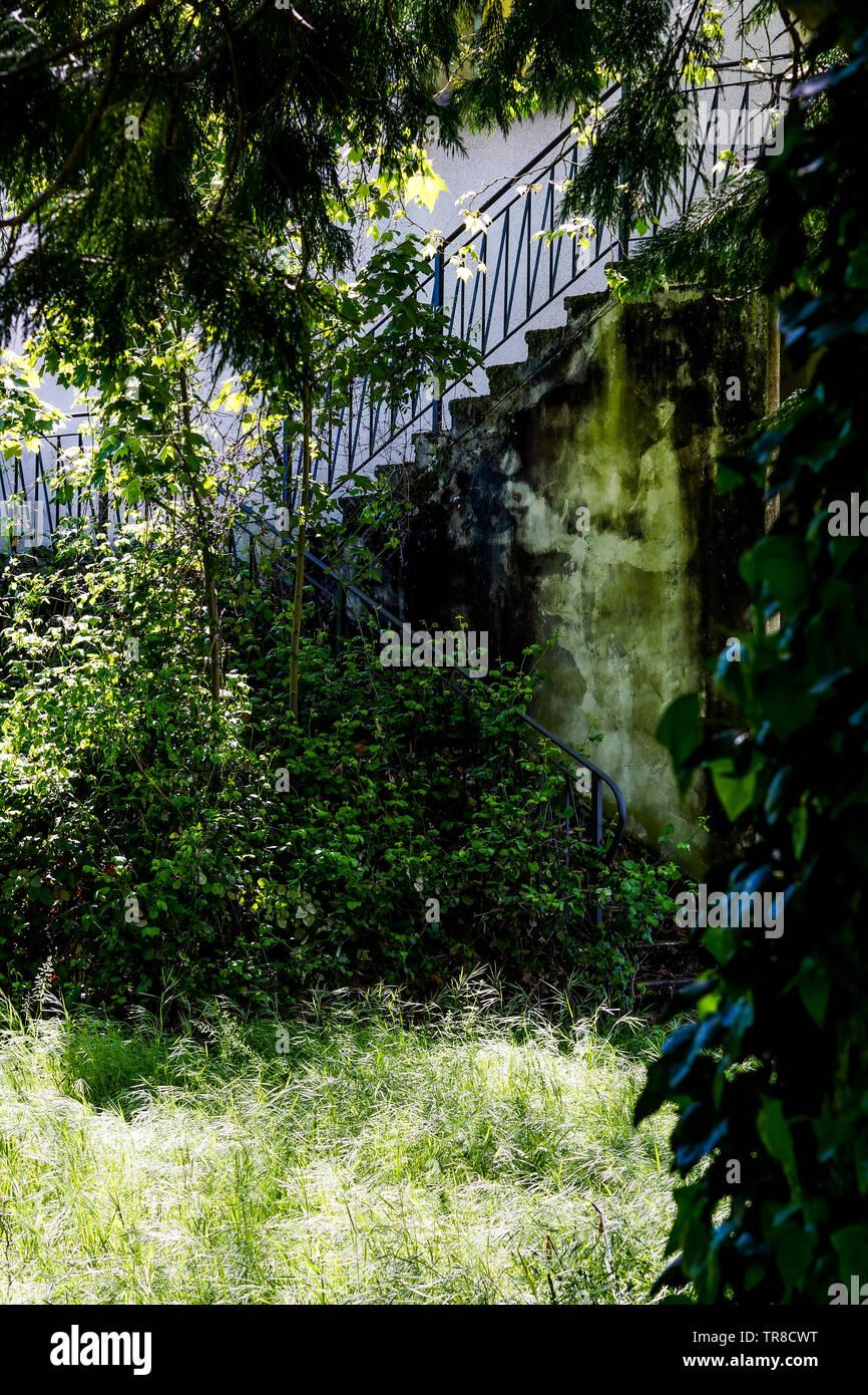Vista de una primavera abandonado jardín que rodea la casa, un hombre muerto, Lyon, Francia. Foto de stock