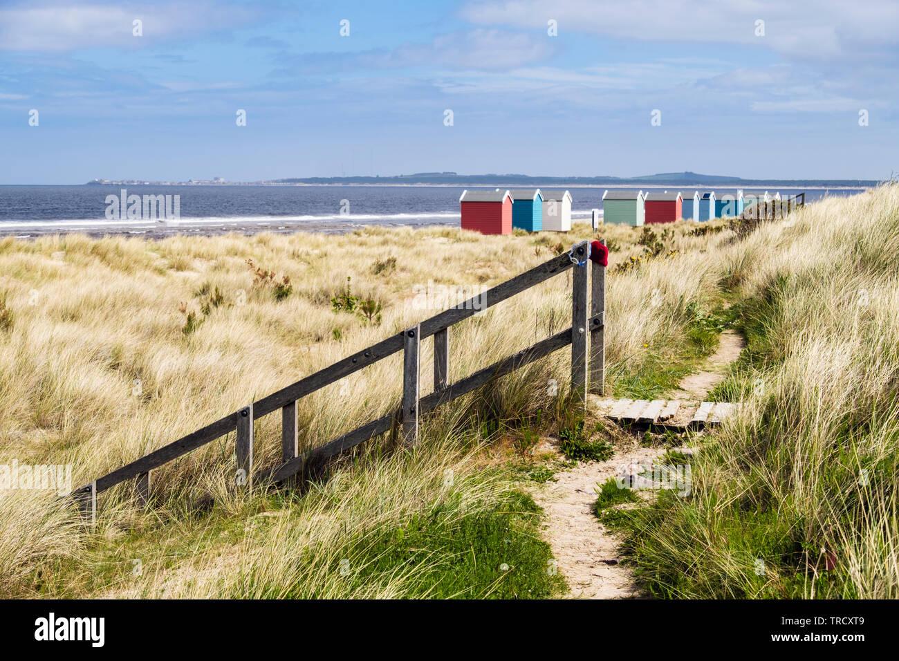 Camino a través de dunas y una escalera de madera que conduce a la playa con coloridas casetas de playa en la costa de Moray Firth. Findhorn, Moray, Escocia, Reino Unido, Gran Bretaña Foto de stock