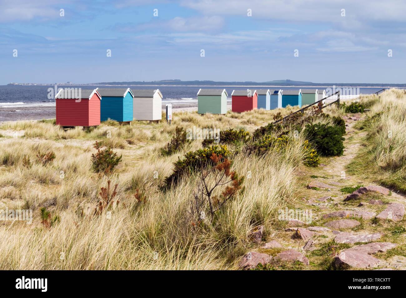 Ruta a través de las dunas de arena por encima de la playa de Findhorn con coloridas casetas de playa en la costa de Moray Firth. Findhorn, Moray, Escocia, Reino Unido, Gran Bretaña Foto de stock