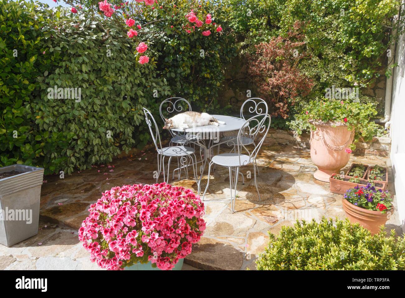 Terraza Con Muebles De Jardín Florecido En Hierro Forjado Y