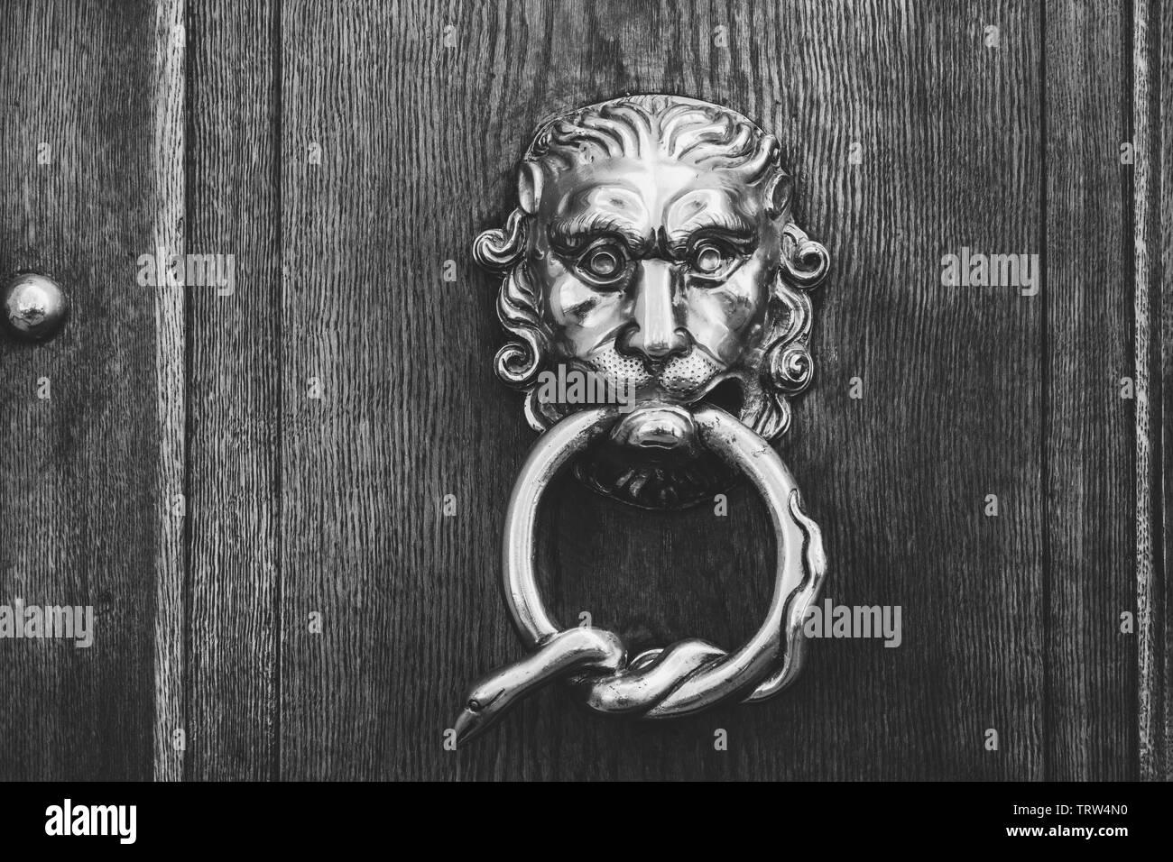 Close-up de un metal brillante cabeza de león con una herida de la serpiente en su boca en una puerta de madera rústica - blanco y negro, levemente desvanecidos buscar Imagen De Stock