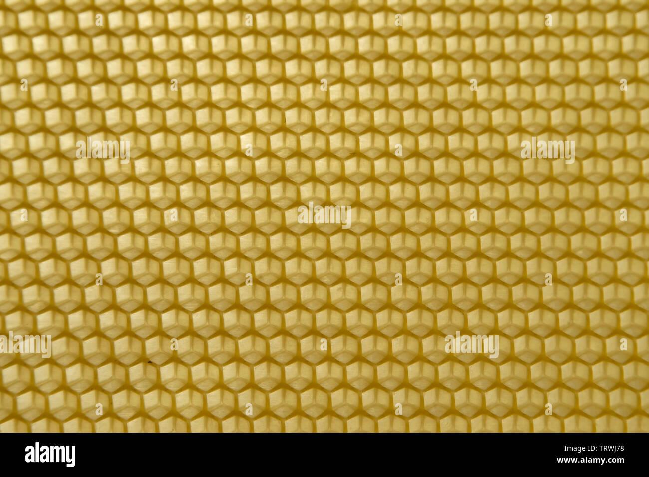 Panal de celdas hexagonales de cera Foto de stock