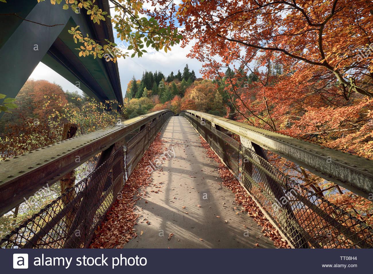 Un puente peatonal que va a Loch Faskally en Perthshire con el otoño árboles colgantes sobre el puente. Foto de stock