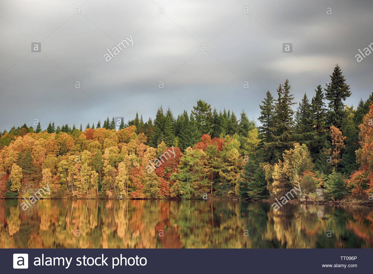 Una larga exposición del obturador de coloridos árboles de otoño reflexionando sobre un río. Foto de stock