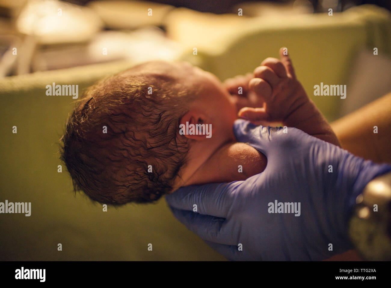 Manos recortada del pediatra llevar bebé recién nacido en el hospital Foto de stock
