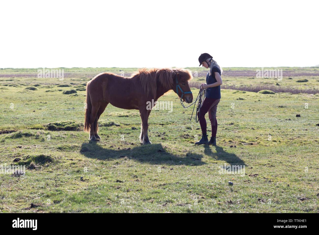 Mujer sosteniendo cuerdas mientras está de pie por caballo en campo de hierba contra el cielo despejado durante el día soleado Foto de stock