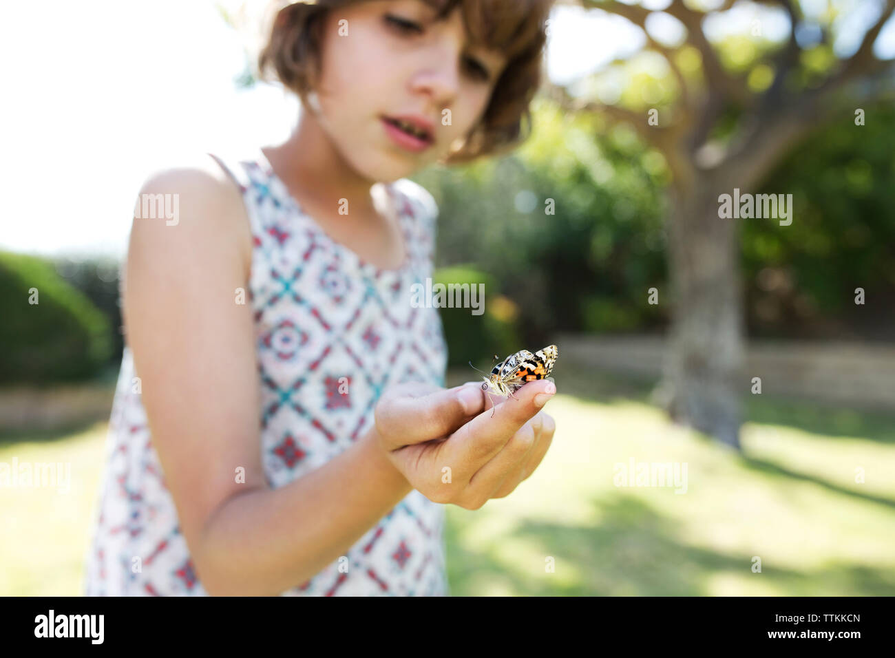 Close-up de Chica sujetando butterfly y pararse en campo Foto de stock