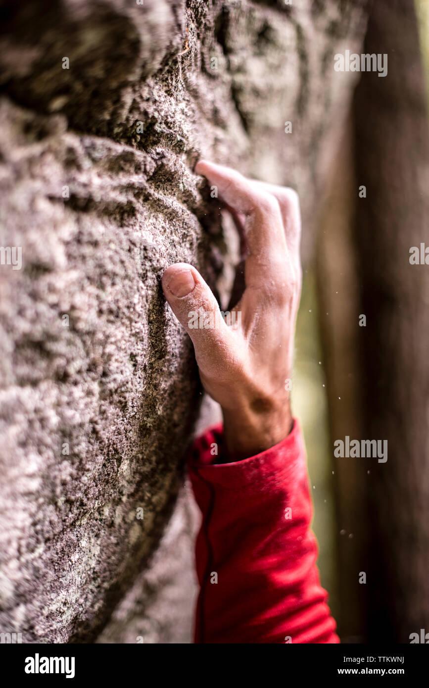 La mano del hombre agarre recortada en roca, mientras que trepar rocas Imagen De Stock