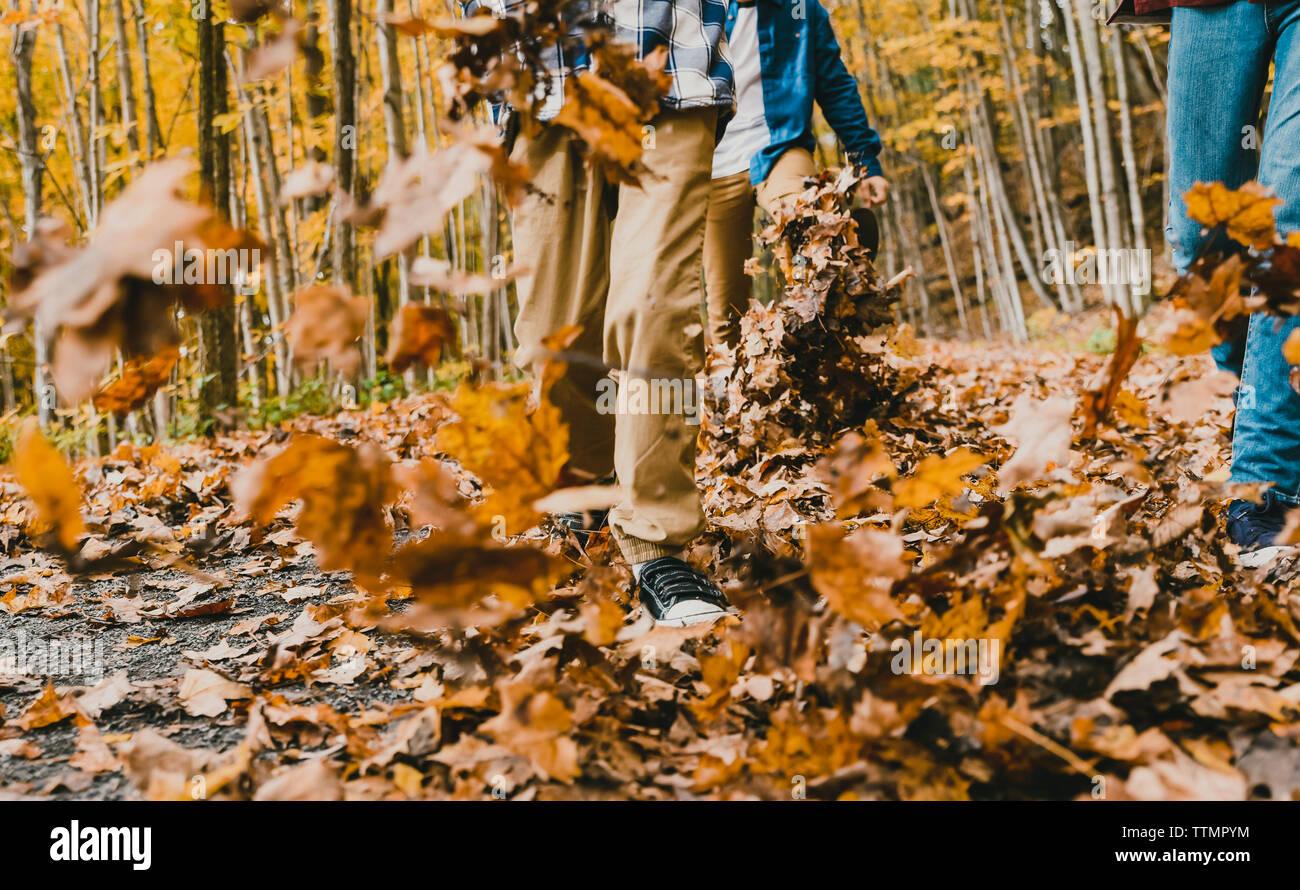 Bajo la sección de niños caminando sobre las hojas secas sobre el sendero en el bosque Foto de stock