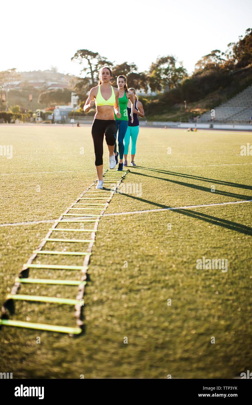 Amigos entrenamiento con escalera de agilidad en campo de deportes Imagen De Stock