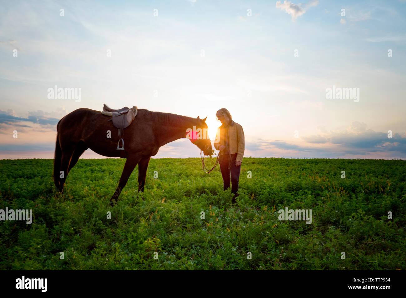 Mujer de pie a caballo sobre césped contra sky Foto de stock