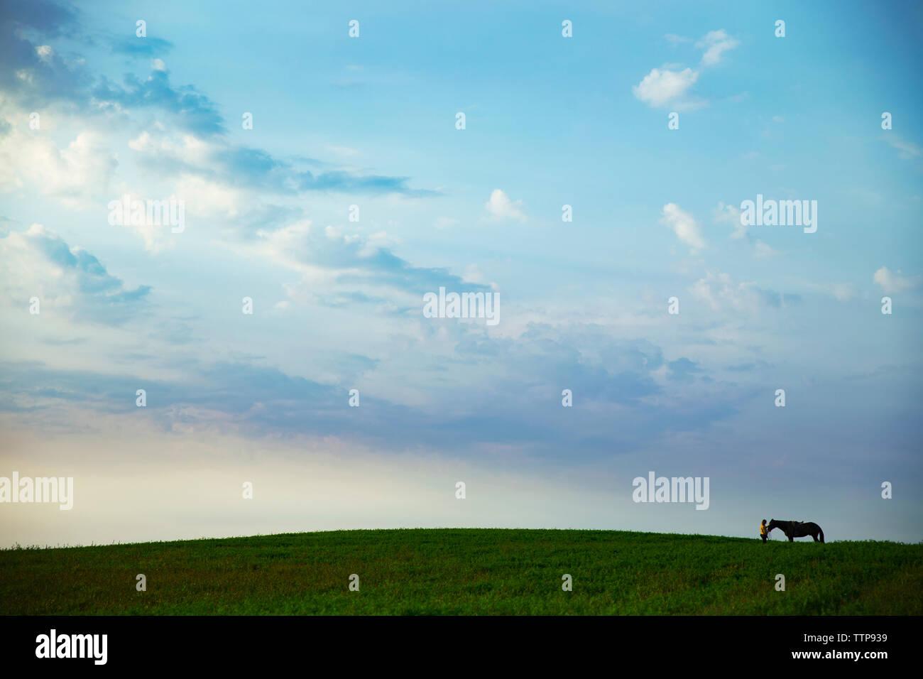 Vista lejana de Mujer de pie con caballo sobre césped Foto de stock