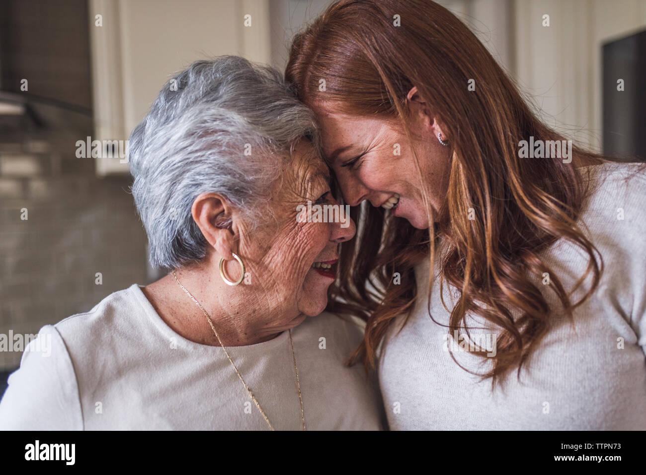 Cerca de la mujer de más edad y adultos nieta tocando frentes Foto de stock