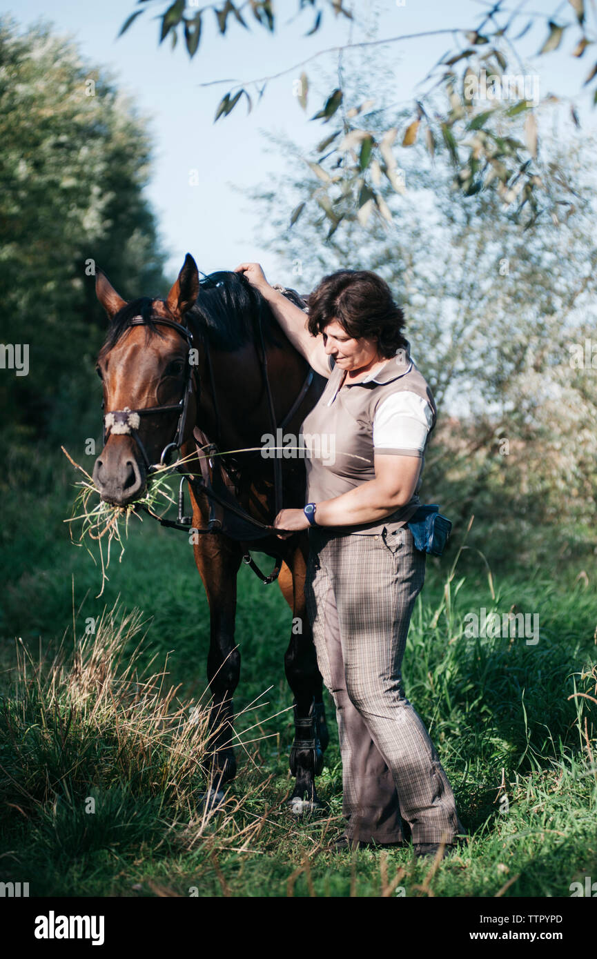 Vista lateral de la mujer a caballo parado sobre césped contra sky Foto de stock