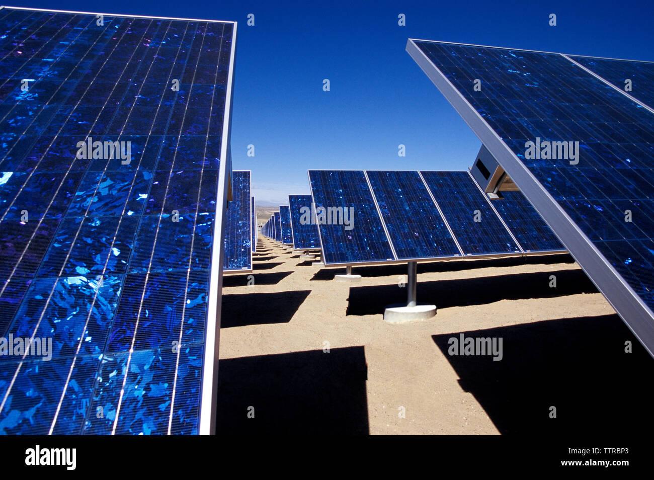 Paneles solares en campo contra el azul claro del cielo Imagen De Stock