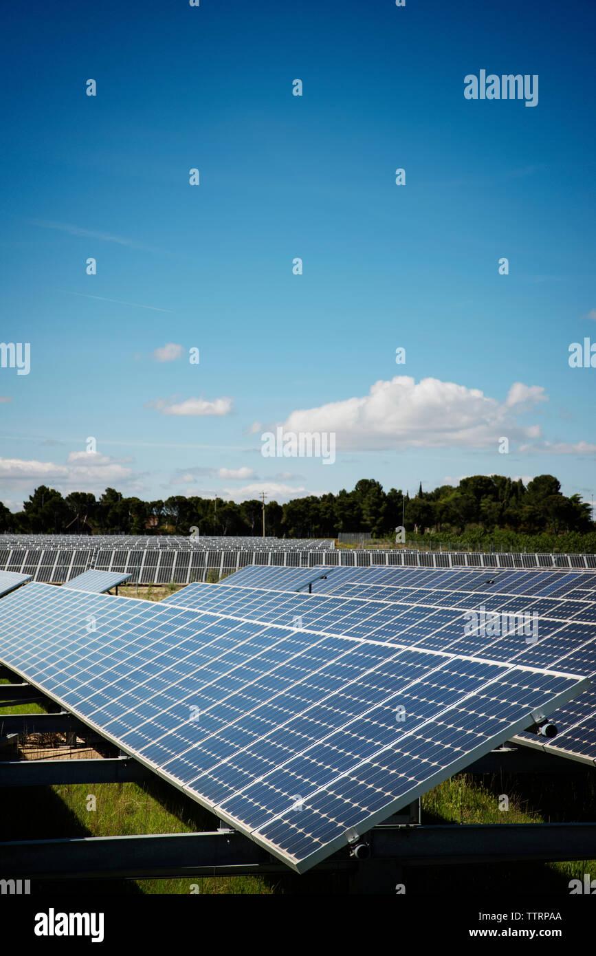 Paneles solares en el campo contra el cielo azul Imagen De Stock