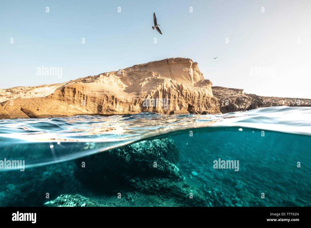 Por encima/debajo de un amarillo bluff y el arrecife bajo el agua en Tenerife Foto de stock