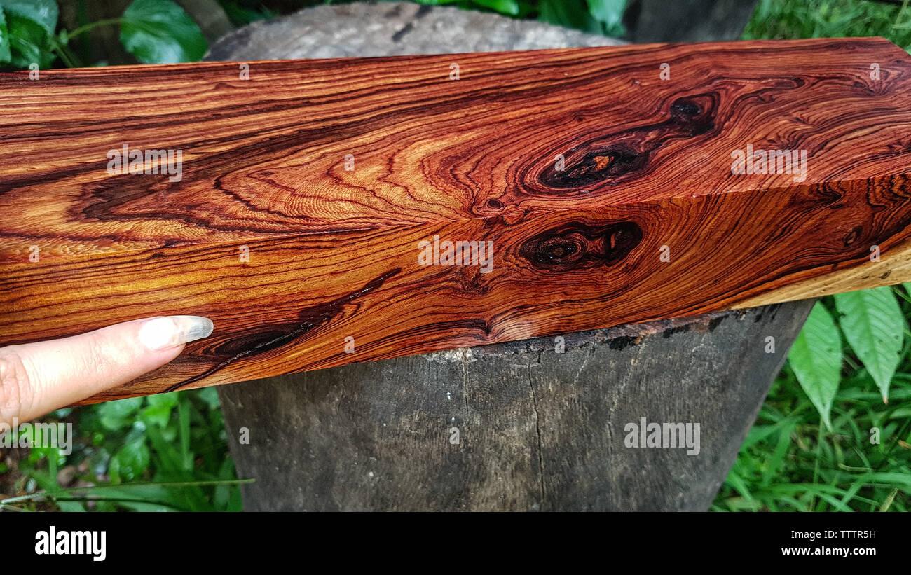 Restaurar cajas Technics sb-x500a Troncos-de-madera-de-palisandro-birmano-hermoso-arbolado-exotico-patron-para-la-artesania-o-el-fondo-tttr5h