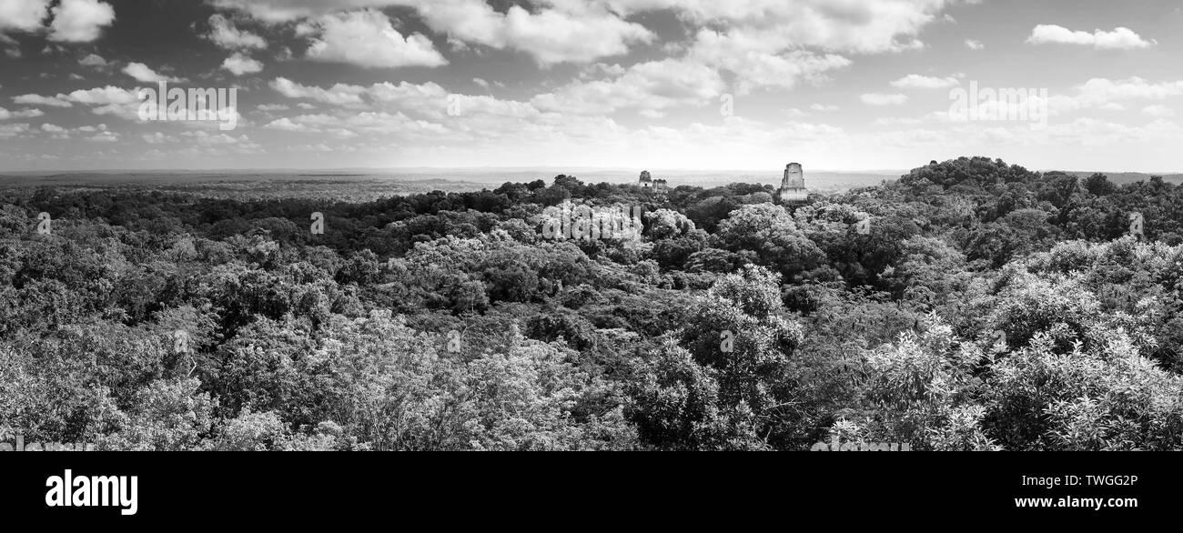 Panorama de la ciudad maya de Tikal, Guatemala en blanco y negro impresionante Imagen De Stock
