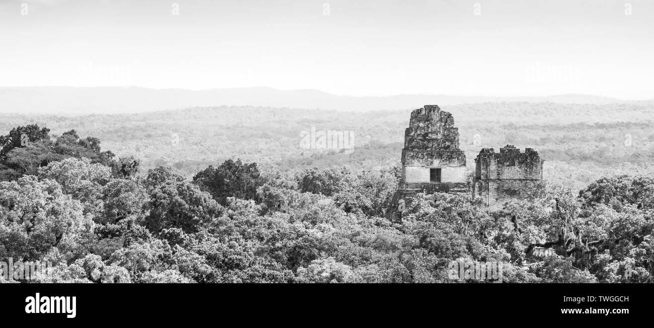 Ruinas de Tikal en Guatemala con la espesa selva tropical en impresionante blanco y negro Imagen De Stock