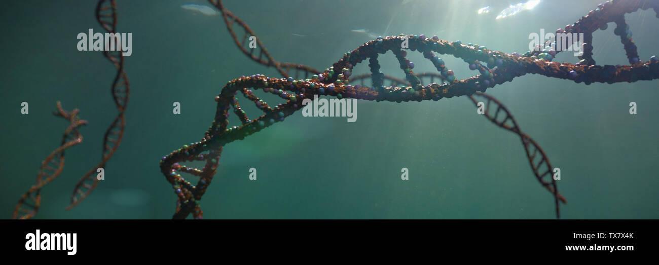 Molécula de ADN, la doble hélice llevando instrucciones genéticas (ciencia 3D rendering banner) Foto de stock