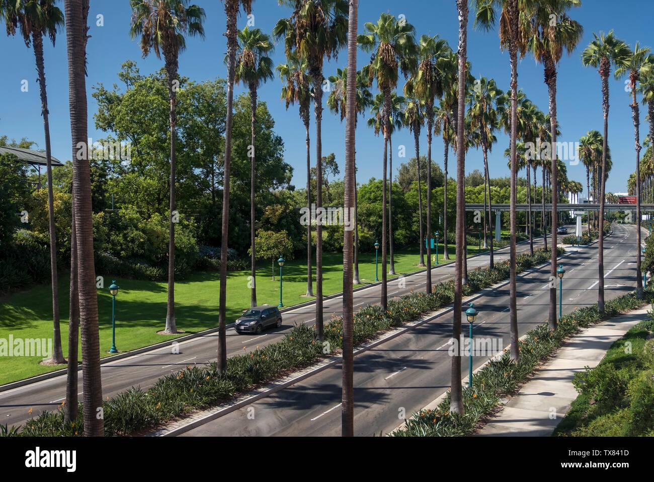 Típica carretera bordeada de palmeras, Anaheim, Los Ángeles, California, Estados Unidos. Foto de stock