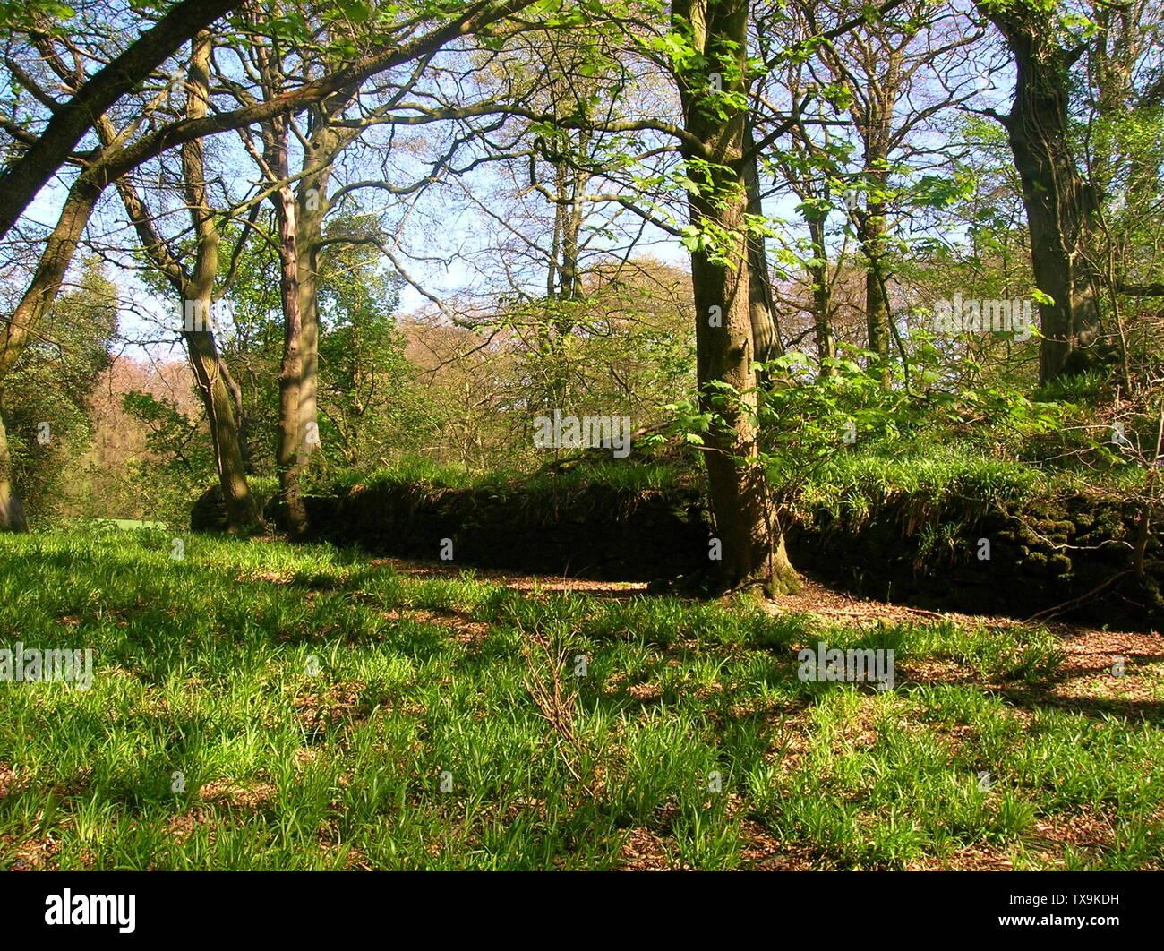"""""""Inglés: Una vista del antiguo castillo en el Montgreenan Lugton agua en North Ayrshire, Escocia. 2007. El muro circundante es probablemente principalmente.Victoriano Rosser 12:26, 27 de abril de 2007 (UTC); el 27 de abril de 2007 (fecha de carga original); propio workTransferred desde en.wikipedia; Rosser1954 en en.wikipedia; ' Imagen De Stock"""