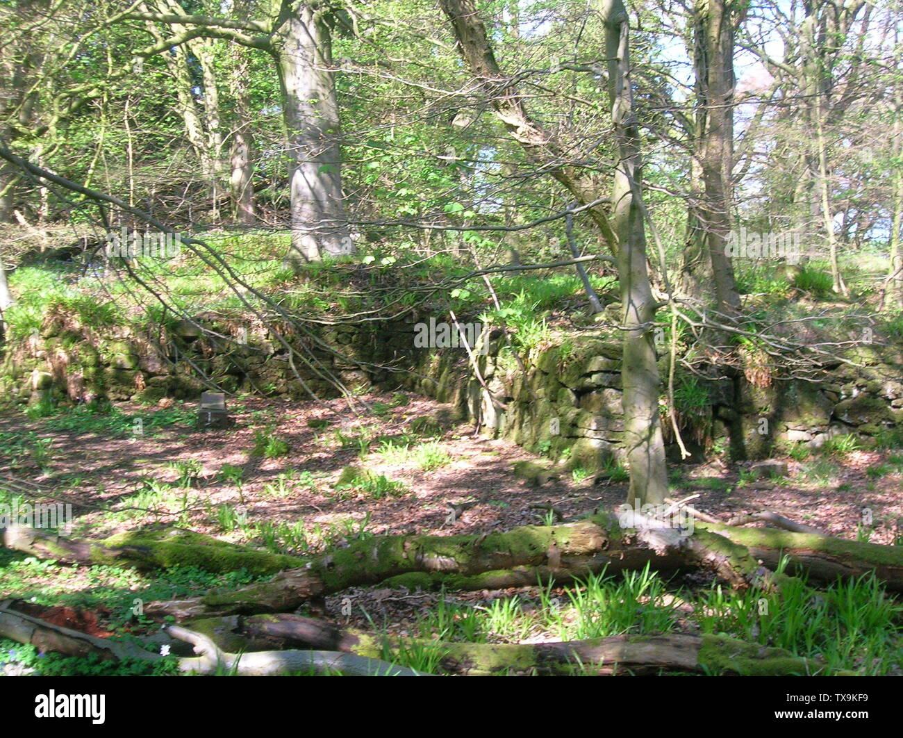 """""""Inglés: Una vista de la pared exterior del antiguo castillo en el Montgreenan Lugton agua, North Ayrshire, Escocia. 2007. Rosser 12:41, 27 de abril de 2007 (UTC); el 27 de abril de 2007 (fecha de carga original); propio workTransferred desde en.wikipedia; Rosser1954 en en.wikipedia; ' Imagen De Stock"""