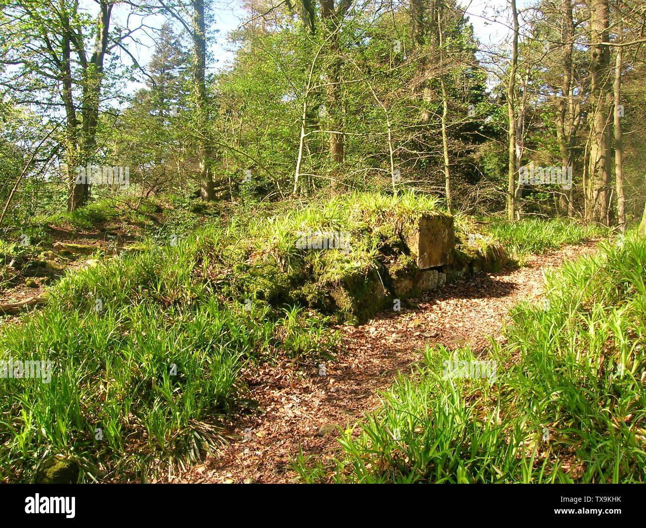 """""""Inglés: Una vista del antiguo castillo en el Montgreenan Lugton agua, North Ayrshire, Escocia. 2007. Rosser 12:32, 27 de abril de 2007 (UTC); el 27 de abril de 2007 (fecha de carga original); propio workTransferred desde en.wikipedia; Rosser1954 en en.wikipedia; ' Imagen De Stock"""