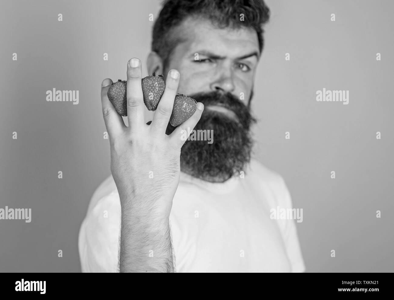 El hombre barba hipster fresas entre los dedos de fondo azul. Contenido de carbohidratos fresa. La mayoría de los carbohidratos la glucosa fructosa sacarosa. Fresas fruta más segura para los niveles de azúcar. Imagen De Stock