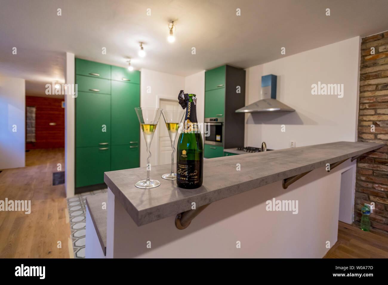 Nuevos muebles de cocina verde con botella de champaña y dos copas ...