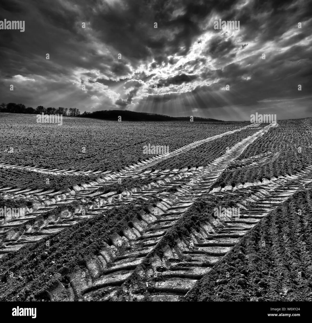 Las orugas del tractor, un campo cercano, el Weser Oberweser Uplands, Weserbergland, Hesse, Alemania Foto de stock