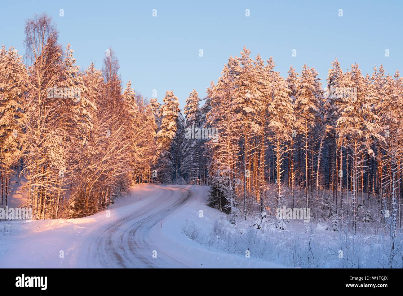 Sinuosas carreteras con nieve y hielo a través del paisaje forestal de invierno Foto de stock