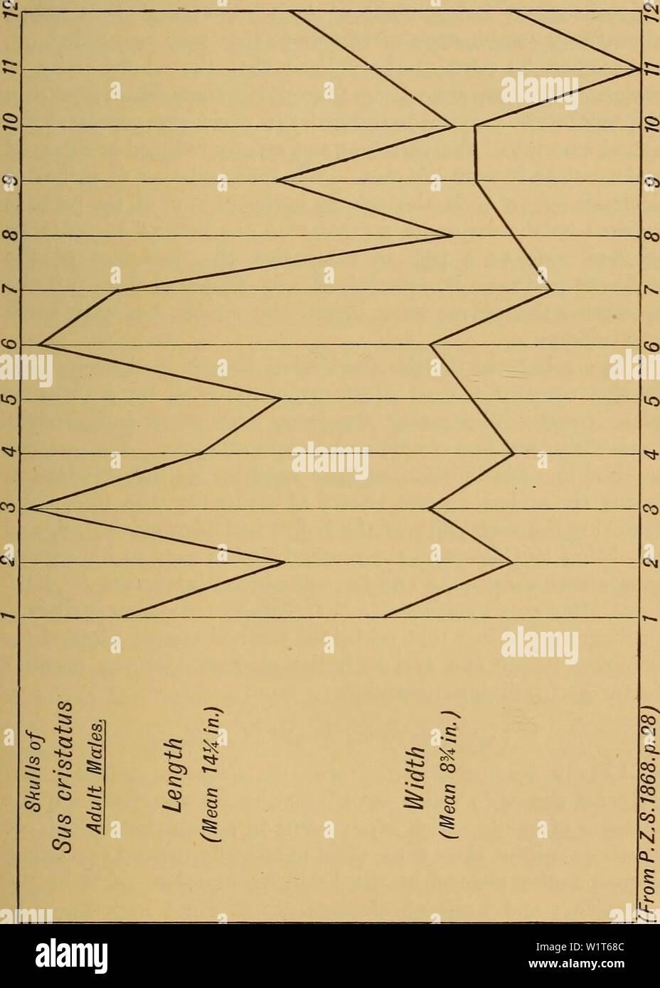 Imagen de archivo de la página 94 del Darwinismo; una exposición de la Foto de stock